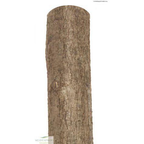 holzpfosten 200 cm holzpfosten haselnuss rund natur 216 7 9 x 200