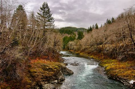 forest, Trees, River, Rocky, Landscape, Autumn Wallpapers ...