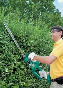 Heckenschnitt Bis Wann : heckenschnitt wann pflanzen f r nassen boden ~ Buech-reservation.com Haus und Dekorationen