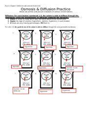 osmosis activitiy names noah butler period osmosis worksheet date biology mr croft 20 points