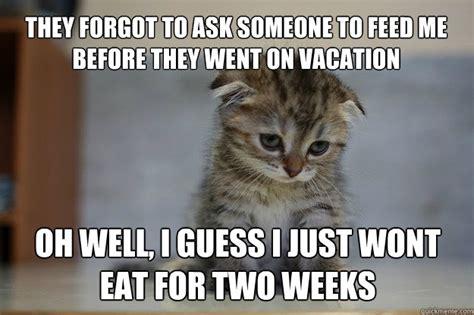 Sad Kitten Memes Image Memes At Relatably.com