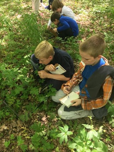 children discover  outdoors  nature play days