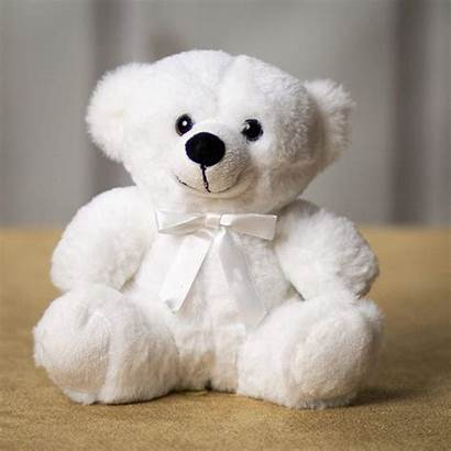 Bear Wholesale Colorama Winter Teddy Plush Rush