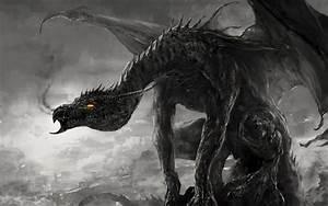Drachen Schwarz Weiß : herunterladen hintergrundbild schwarz wei foto feurigen augen drachen fantasy f r desktop ~ Orissabook.com Haus und Dekorationen
