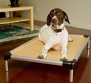 best indestructible dog beds for tough chewers With best durable dog bed