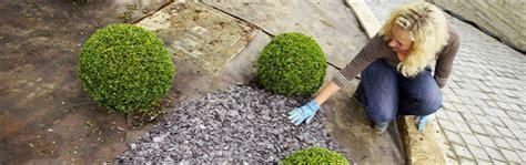 Gartenvlies Unkraut Bekämpfen Ohne Gift  Garten News