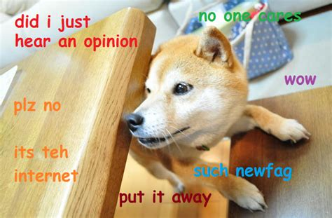 Know Your Meme Doge - smart doge doge know your meme