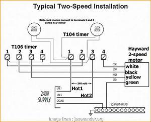 Electrical Wiring Diagram Star Delta Pdf Perfect 2 Speed 3