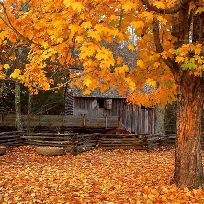 Fall Cabin Autumn Screensavers Desktop Et Background