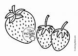 Coloring Pages Strawberries Printable Fruits Simple Three Strawberry sketch template
