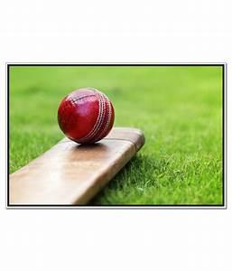 Shopolica Cricket Bat And Ball Poster: Buy Shopolica