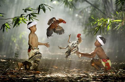 50 National Geographic Photos  Award Winning Photography