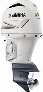 Yamaha Outboard Motor Torque Specs