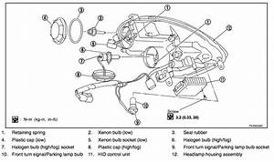 06 Sedan Headlight Wiring