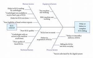 Fishbone Diagram Acquisition