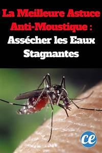 Astuce Anti Radar : la meilleure astuce anti moustique ass cher les eaux stagnantes ~ Medecine-chirurgie-esthetiques.com Avis de Voitures