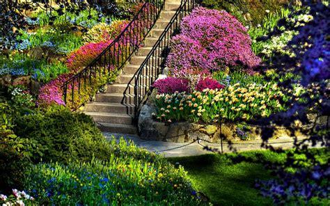 花园,高清图片 - 壁纸更好