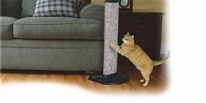 Cat scratch furniture protectors roselawnlutheran for Furniture protector from cats