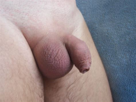 Soft and small uncut cocks      Pics   xHamster com