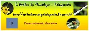 Repiquer Des Oignons : l 39 atelier du moustique kalayamsha conserver ses bulbilles d 39 oignons a repiquer ~ Voncanada.com Idées de Décoration
