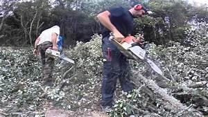 Foret à Bois : coupe de bois de chauffage youtube ~ Nature-et-papiers.com Idées de Décoration
