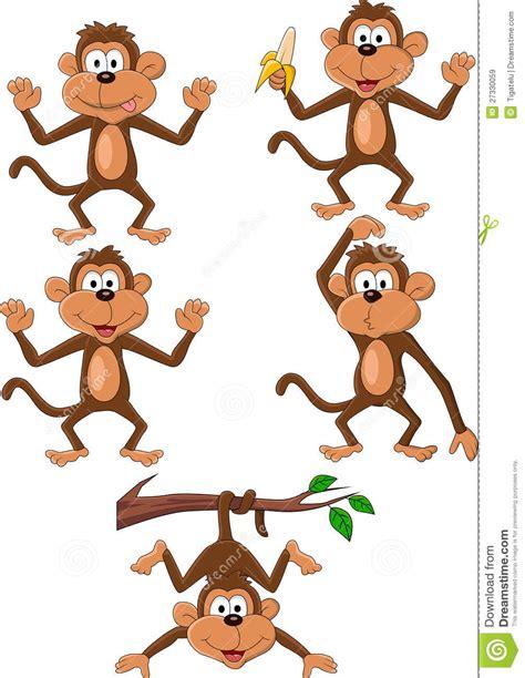monkey royalty free stock 27330059