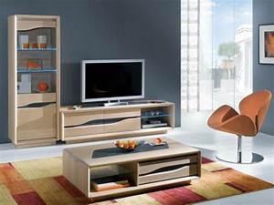 Meuble Salon Moderne : le meuble colonne en 45 photos qui vont vous inspirer ~ Premium-room.com Idées de Décoration