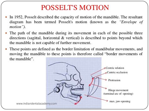 s envelope of movement occlusion