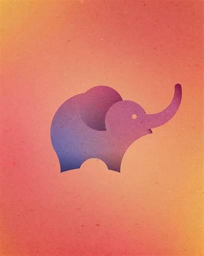 Animal Circles Perfect Logos Elephant Colorful Walrus