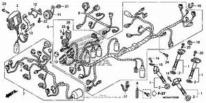 Wire Harness For 2007 Honda Vfr800