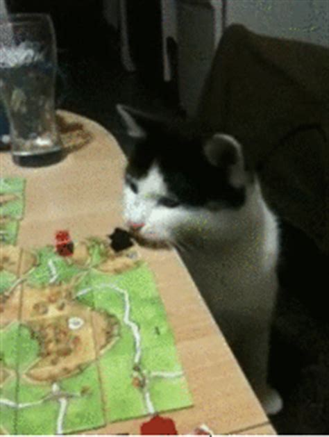 Card games to play with 3 people. This is why we cant play board games - Meme Guy