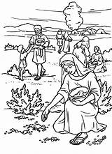 Manna Coloring Bible Exodus Quail Moses Sheet Israel Israelites Del Cloud Pueblo Sunday Para Printable Crafts Sheets Wilderness Children Egypt sketch template