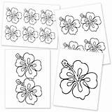 Flower Template Hawaiian Hibiscus Printable Templates Flowers Drawing Lei Luau Stencils Printables Hawaii Paper Stencil Icing Royal Tropical Leaf Clipart sketch template