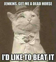Beating A Dead Horse Meme - i admire your commitment to beating a dead horse funny pinterest facebook other and i love