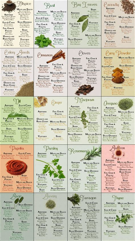guide cuisine herb spice chart common sense evaluation