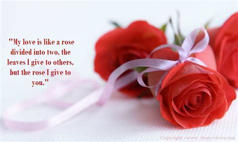red rose love quotes latest  beautiful red rose