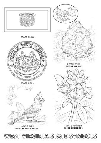west virginia state symbols coloring page flag coloring