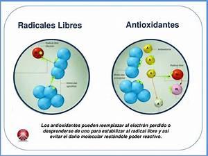 porque azul es el zumo antioxidante para tu salud el With delicioso zumo antioxidante contra los radicales libres