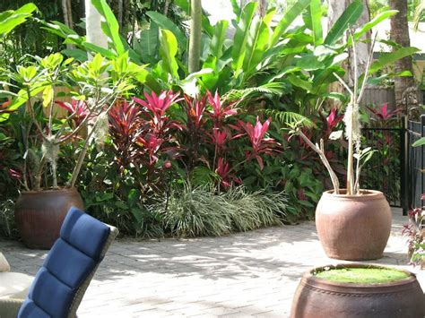 tropical garden bed 17 best images about my balinese garden ideas on pinterest bali garden gardens and balinese