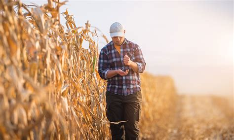 drought related stress  farmers findings