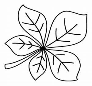 Feuilles D Automne à Imprimer : coloriage une feuille de marronnier turbulus jeux pour enfants ~ Nature-et-papiers.com Idées de Décoration