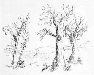 How to draw - Sketch a Tree - Pencil - Creative Blog ...