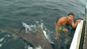 SHARK ATTACK NEAR MISS GOLD COAST - YouTube