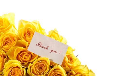 Wedding Anniversary yellow roses 50th Stock Photo