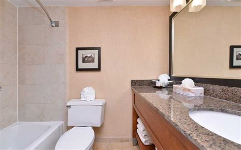 embassy suites hotel tropic brown granite vanity tops