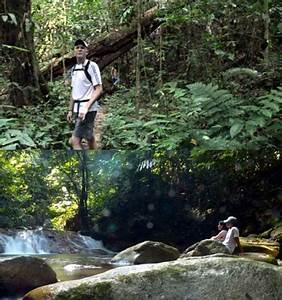 Jungle Trekking   The Shorea Retreats