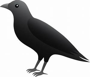 Top 71 Raven Clip Art - Free Clipart Image