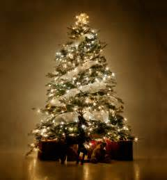 rediscover the meaning of christmas symbols behind the christmas treerivertea blog