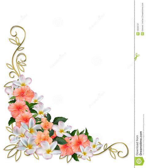 tropical flowers corner design royalty  stock