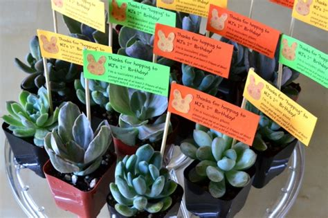 tag theme ideas for 1st birthday party for boy mj s 1st birthday party favors the republic of succulents